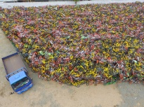 November 28, 2017 - Nanjin, Nanjin, China - Nanjing, CHINA-28th November 2017:(EDITORIAL USE ONLY. CHINA OUT) ..Mountain of impounded shared bikes can be seen at a parking lot in Nanjing, east China's Jiangsu Province, November 28th, 2017. Although the bike-sharing services are booming nationwide in China, it's challenging to manage bike-sharing and arrange orderly parking. And some bike-sharing companies have gone bankrupt after months of problems. (Credit Image: © SIPA Asia via ZUMA Wire)