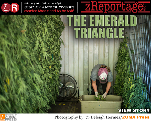 The Emerald Triangle