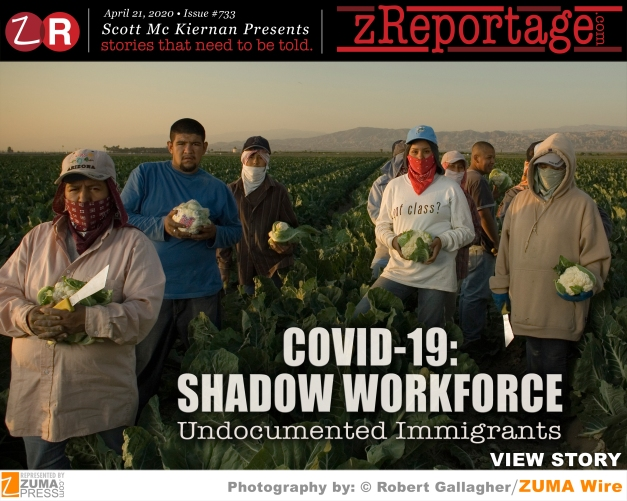 COVID-19: Shadow Workforce: Undocumented Immigrants